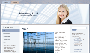 Blue Gray Business Theme