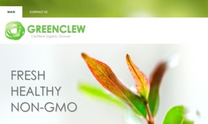 Green Clew Responsive Theme